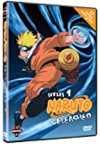 Naruto Unleashed - Series 9 - The Final Episodes [DVD] [2002]