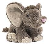Lashuma Cuddlekins Plüschtier Baby Elefant, Kuscheltier sitzend ca. 20 cm