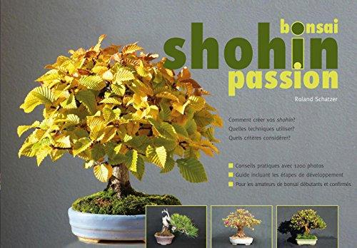 Bonsai shohin passion. Comment créer vos shohin?