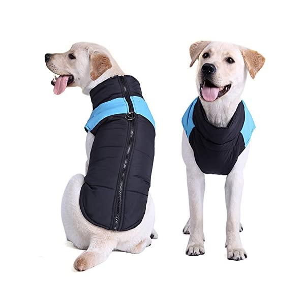 TFENG Waterproof Dog Coats Padded Puffer Jackets with D-Rings for Leash 4 Colors XS-5XL 6
