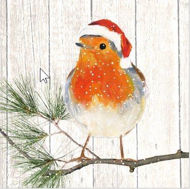 20-tovaglioli-uccelli-in-inverno-birds-animali-invernale-natale-33-x-33-cm