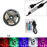 STRIR 50-200CM Impermeable USB LED Strip Light TV Lámpara trasera 5050RGB Cambio de color + Control remoto de 24 teclas (100cm)