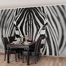 Bilderwelten Fotomural Premium - Zebra Look - Mural apaisado papel pintado fotomurales murales pared papel para pared foto 3D mural pared barato decorativo, Tamaño: 255cm x 384cm