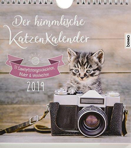 Der himmlische Katzenkalender 2019: 53 Samtpfotengeschichten, Bilder & Weisheiten
