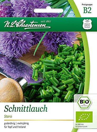 Bio Schnittlauch 'Staro (grob)' Saatgut Samen (grobröhrig, mehrjährig)