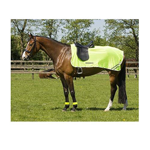 netproshop Sicherheit Pferde Leichte Reflex-Ausreitdecke aus Feinmaschigem Gewebe Gelb, Groesse:155