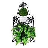 Homewell Blumenregal für Blumentöpfe, Robustes Eckregal aus Metall für den Innen- & Außenbereich