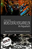 : Monsterfächergarnelen im Aquarium: Haltung und Pflege der Blauen Monsterfächergarnele Atya gabonensis (Wild Shrimps Fächergarnelen, Band 3)