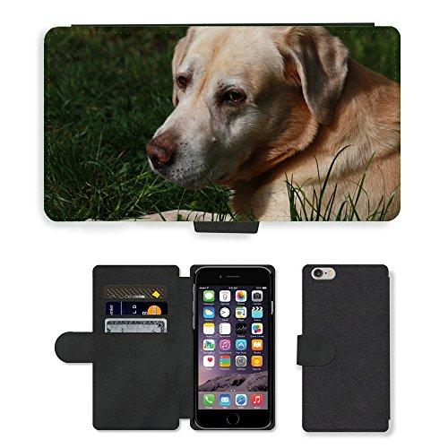 Just Mobile pour Hot Style Téléphone portable étui portefeuille en cuir PU avec fente pour carte//m00139967pour chien Doggy Sight Museau Animal//Apple iPhone 6Plus 14cm