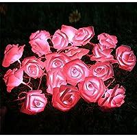 Emwel fiore fata luci 20 LED luci a pile Rose