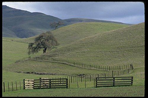 477047-serene-hills-near-hollister-california-a4-photo-poster-print-10x8