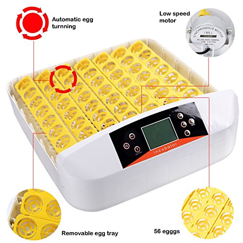 Sailnovo Inkubator Vollautomatische Brutmaschine 56 Eier Brutkasten Brutgerät Motorbrüter Hühner enten, Brutapparat mit LED Temperaturanzeige und Präzieser Temperaturfühler