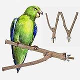 Y-Form Zweig Sitzstangen für Vögel Papagei