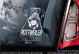 Sticker International Rottweiler - Adesivo Auto - Cane Firmare Finestrino, Paraurti Adesivi Regalo - V006 - Bianco/Trasparente - Esterno Stampa, 160x100mm