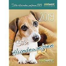 Süße Hundewelpen 2019 Tagesabreißkalender