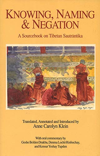 Knowing, Naming, and Negation: A Sourcebook on Tibetan Sautrantika (Translations in Indo-Tibetan Buddhism)