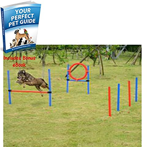 Adjustable Pet Agility Training Equipment Dog Play Run Jump Obedience