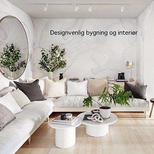 Designvenlig bygning og interiør (Danish Edition) por N Matsuura