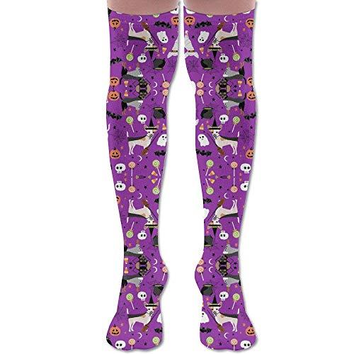 Yuerb Hohe Socken New Chihuahua Halloween Dog Breed Purple Fashion Stylish Comfortable Knee High Socks Long Socks for Women and Men