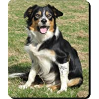 Welsh Border Collie Dog mouse Mat/Pad–Unique Gift for all Doggy lovers 255 - Border Collie Lovers