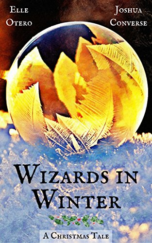 Wizards in Winter: A Christmas Tale (English Edition)