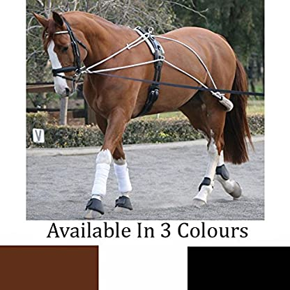 Tack N Hack EXCLUSIVE COLOURS Horse Training Lunging Roller Pessoa Inspired Schooling Training Aid System Equipment Item 1