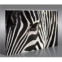 Zebra V2-100 Quadri moderni intelaiati - pronti da appendere - Fotografia formato XXL - Stampa su tela - Quadro x poltrone salotto cucina bagno mobili ufficio casa