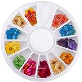 60X Flores Seca para Decoración de Uñas en caja rueda