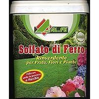Sulfato de hierro rinverdente y musgos para césped flores plantas de 5 kg