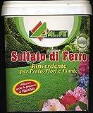 solfato di ferro rinverdente e antimuschio per prato fiori piante da 5 kg