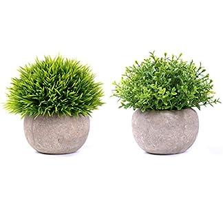 YQing Plantas Suculentas Artificiales Plastico Maceta Decorativas, Plantas Artificiales Verdes para Casa, Cocina, Jardín Hogar Oficina Decoración