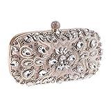 LLUFFY-Clutchmonederos Nuevo bolso de noche con cuentas hecho a mano, vestido de diamante de Europa y América. Embrague, 19 * 9 * 5 cm, Champagne