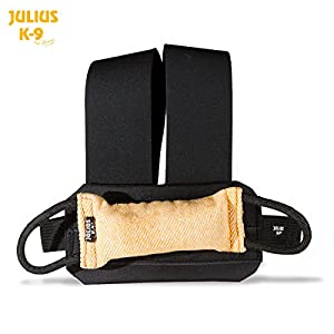 Julius K9 145be Sangle de poitrine avec Boudin (145be-G + 145be B)