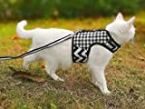 Yizhi Miaow Escape Proof Cat Harness with Leash Medium, Adjustable Cat Walking Jackets