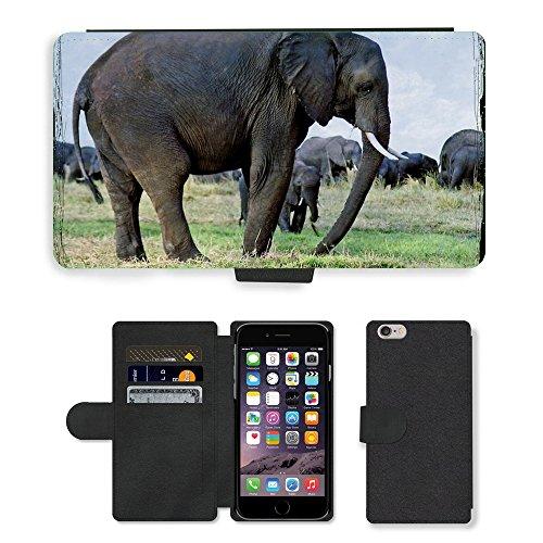 Just Mobile pour Hot Style Téléphone portable étui portefeuille en cuir PU avec fente pour carte//m00138732éléphants Animaux Namibie Safari//Apple iPhone 6Plus 14cm