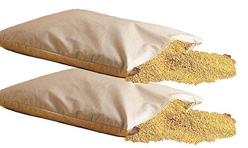 2 x Bio Hirsekissen 40 * 80 cm almohadas mijo cremallera