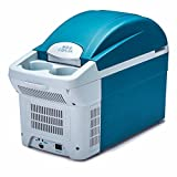 LIUYU Auto Refrigerator8.5l 12v auto kühler auto hause dual-use auto kalt und warm box camping mini kühlschrank