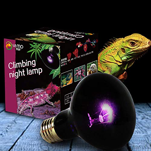 FairOnly UVA Reptile Noche lámpara de Ambiente Bombilla imitación Moonlight Noche luz Nocturna iluminación lámpara para Lagarto Serpiente Reptil Animales 220V E27