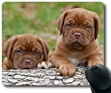 Animals Dog Puppy Dogue de Bordeaux French Mastiff Theme Mousepad,Customized Rectangular Mouse Pad