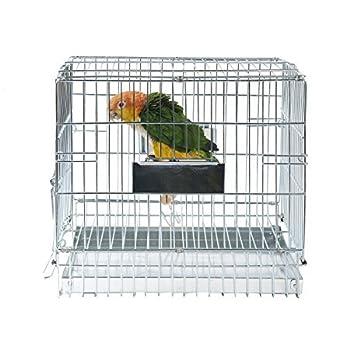 Rainforest Cages en métal de transport Cage de voyage Taille petite