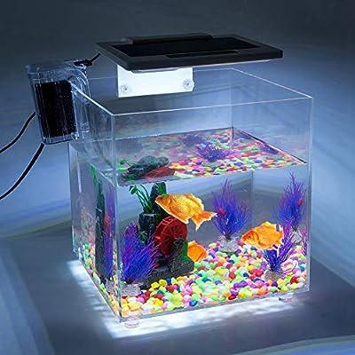 Cocoarm Acryl Aquarium Transparent Aquarien Aquarium Komplett Set Ablaichkasten Fisch Züchter Brutplatz mit LED Beleuchtung Leuchte Lampe Internem Filter 27 * 27 * 27cm