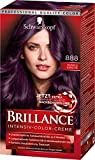 Schwarzkopf Brillance Intensiv-Color-Creme 888 Dunkle Kirsche Stufe 3, 3er Pack (3 x 143 ml)