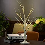 DAXGD LED-Leuchten Schreibtischlampe Weißer Birkenbaum, 23.6 Zoll, perfekt für Home Festival Party Hochzeit Weihnachten (Warmes Weißlicht)