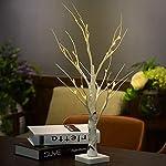 DAXGD Lampada da tavolo a LED Albero di betulla bianco, 23.6 pollici, perfetto per la festa di nozze del partito di Natale