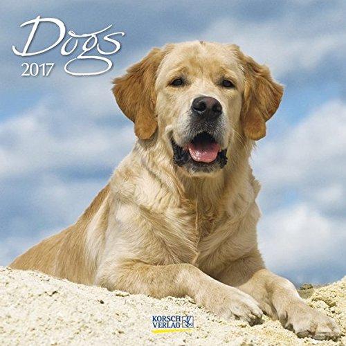 Dogs 2017. Broschürenkalender: Broschürenkalender mit Ferienterminen