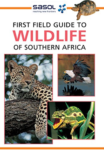 First Field Guide to Wildlife of Southern Africa (Spider Web Cape)