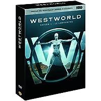 Westworld - Saison 1 : Le Labyrinthe