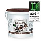 AniForte Gelenk-VETAL – Doppelte Gelenk-Kraft 1kg für Pferde