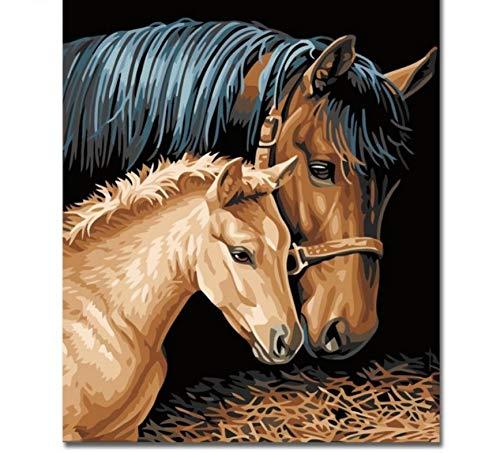 akeansa Diamant Mal Kit 5D Pferd Paare Mal Kits DIY Malerei Paint Decor 30x40 cm (Paare Die Schöne Biest Und Das)