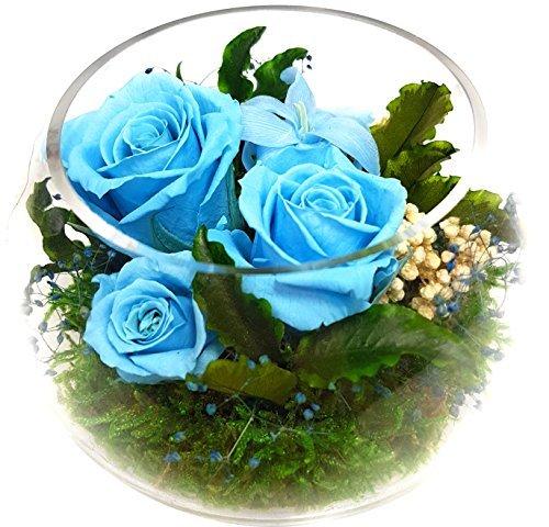 Rosen-te-amo Geschenk für sie - Blumen-Gesteck aus ECHTE Konservierte Rosen - Blumen-Strauß in der Vase - Geschenk für Freundin – Blumen-Arrangement sind 3 Jahre haltbar optimal als Geschenk für Frau